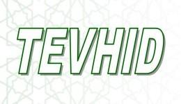 TEVHID
